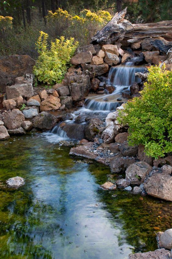 Backyard Water Feature Ideas 16