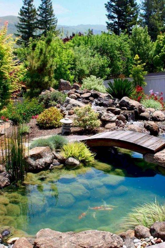 Backyard Water Feature Ideas: Decorative Water Garden